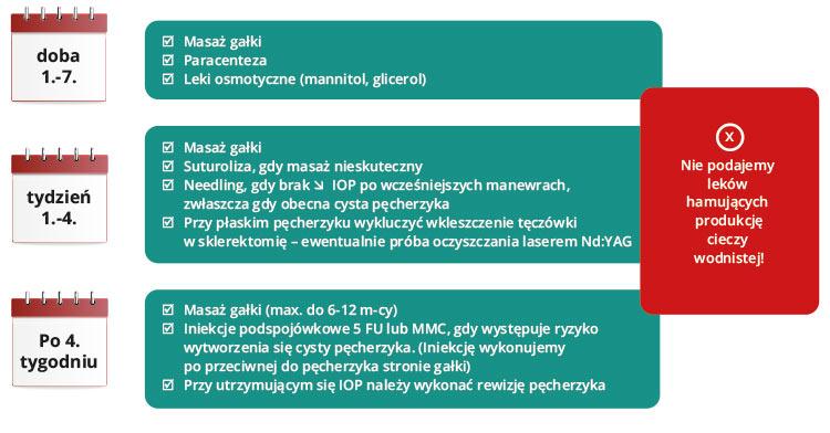 Ryc. 2. Schemat postępowania wpierwszym miesiącu po zabiegach filtracyjnych